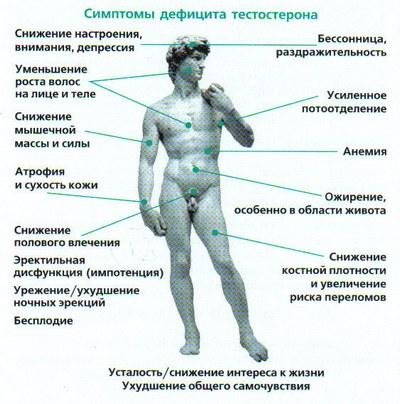 foto-pizdi-zreloy-v-sperme